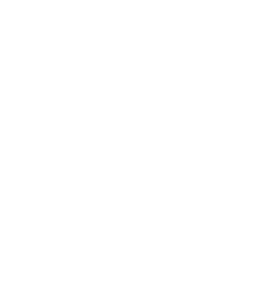 Xabi Larrea, Circus and Theatre